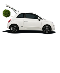 What will you buy with your £20 gift voucher?